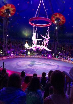 Our circus guests